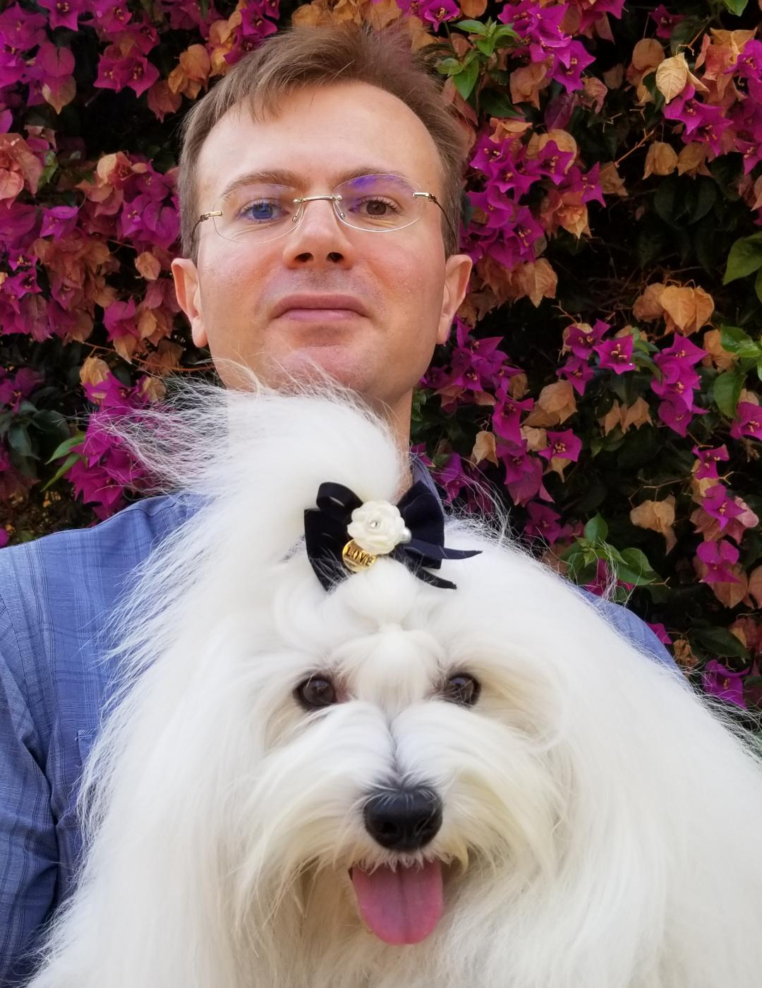 Frank And Shanti The Coton de Tulear