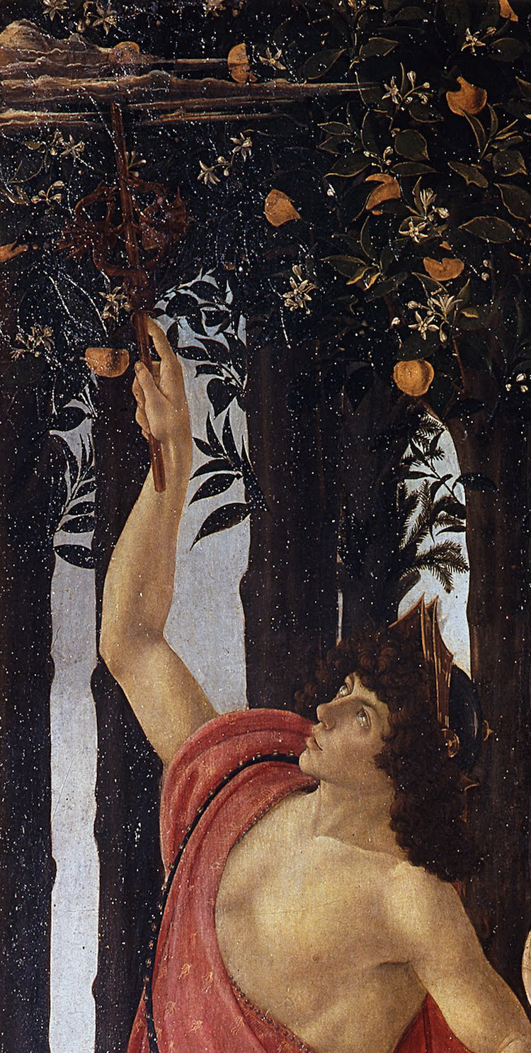 Botticelli La Primavera - Mercurio